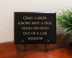 Only a biker knows why a dog sticks his head out of a car window.