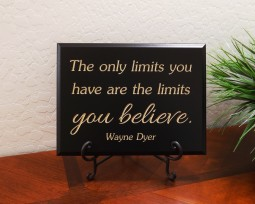 The only limits you have are the limits you believe. Wayne Dyer