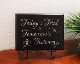 Today's Trial is Tomorrow's Testimony.
