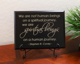 We are not human beings on a spiritual journey, we are spiritual beings on a human journey. - Stephen R. Covey -